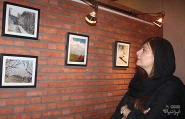 نمایشگاه عکس «مجید پازوکی» (برای بزرگنمایی تصویر کلیک کنید)