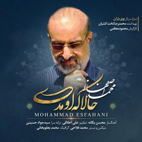آهنگ جدید محمد اصفهانی با نام «حالا که اومدی» را دانلود کنید