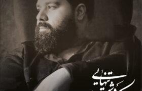 آهنگ جدید رضا صادقی با نام یک دشت تنهایی را دانلود کنید